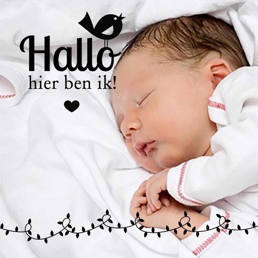 Geboortekaartjes - Hallo, hier ben ik, met een vogeltje en hartje