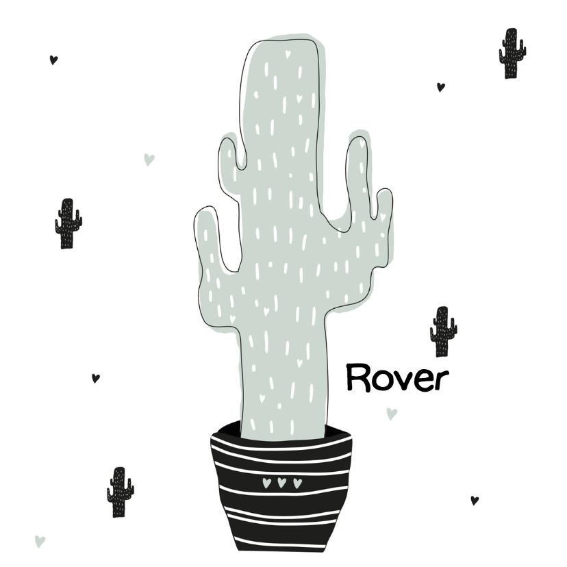 Geboortekaartjes - Hip geboortekaartje cactus mint