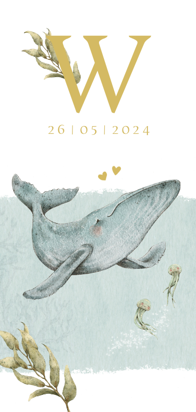 Geboortekaartjes - Lief en bijzonder geboortekaartje met walvisje in de oceaan