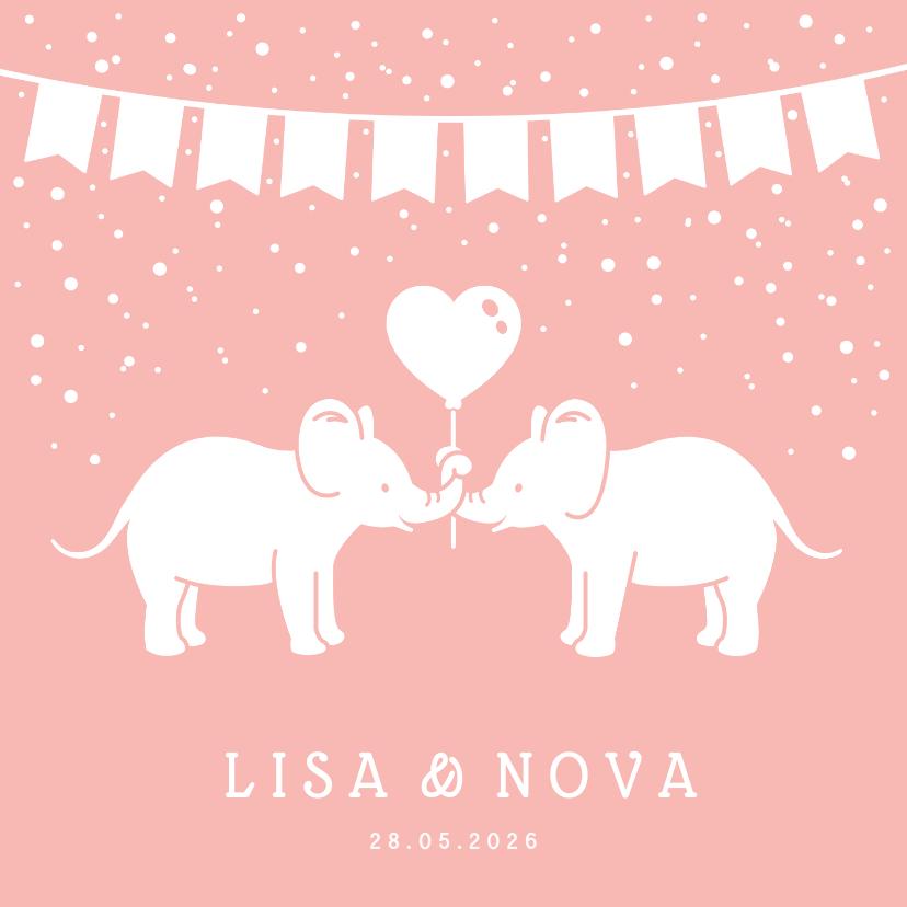 Geboortekaartjes - Lief geboortekaartje meisjes tweeling met 2 olifantjes