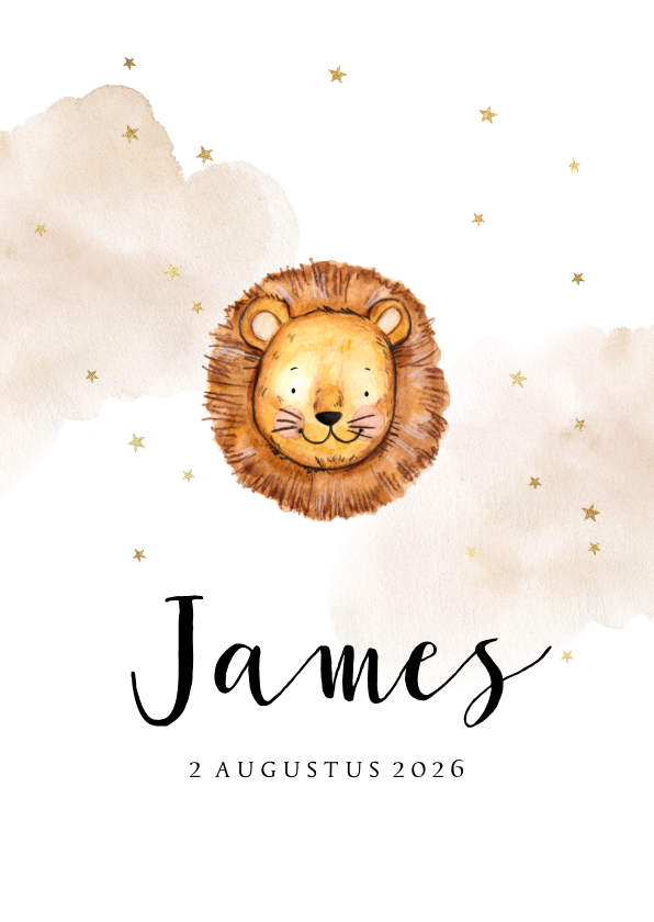 Geboortekaartjes - Lief geboortekaartje met leeuwtje en gouden sterretjes