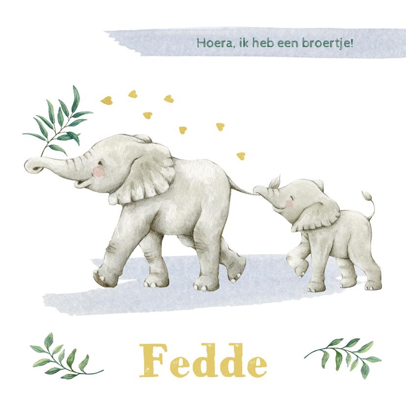 Geboortekaartjes - Olifantjes op avontuur op geboortekaartje broertje