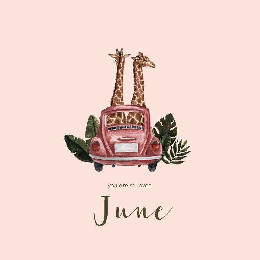 Geboortekaartjes - Roze geboortekaartje met illustratie van giraffen in auto