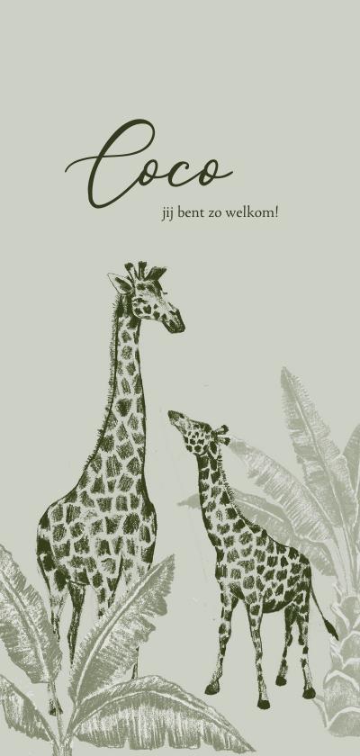 Geboortekaartjes - Vintage jungle geboortekaartje handgetekend giraffe kleintje