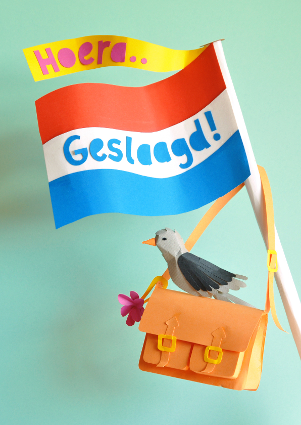 Geslaagd kaarten - Geslaagd vlag met vogeltje