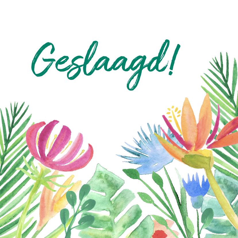 Geslaagd kaarten - Geslaagdkaart tropische bloemen