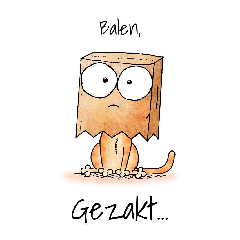 Geslaagd kaarten - Gezakt kaart kitten met papieren zak