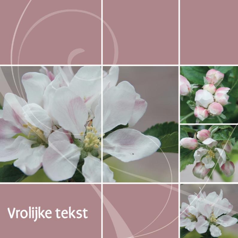 Jubileumkaarten - Jubileumkaart openen bloesem