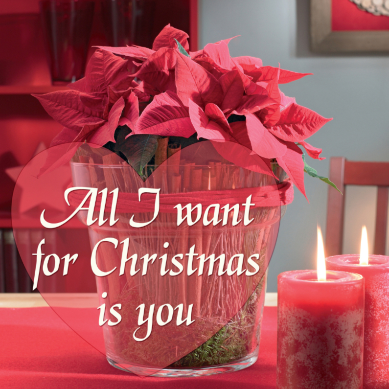 Kerstkaarten - All I want for Christmas is you kerstster