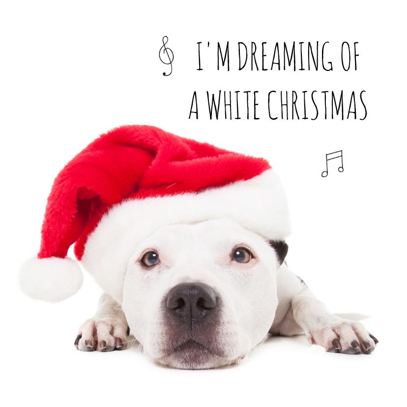 Kerstkaarten - Dieren kerstkaart - Hond - Staff