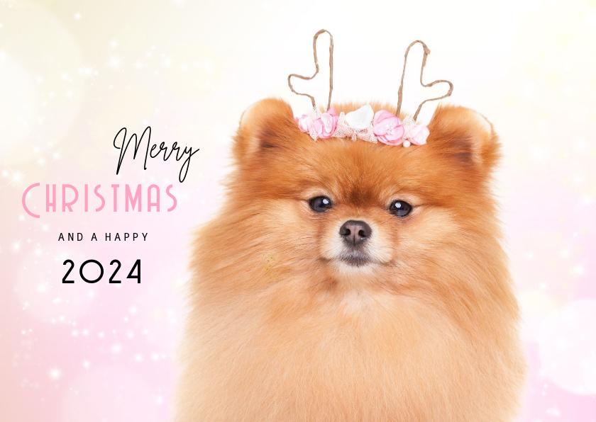 Kerstkaarten - Dieren Kerstkaart - Pomeranian rendier roze
