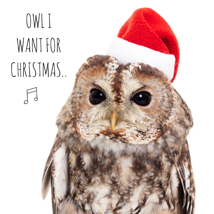 Kerstkaarten - Dieren Kerstkaart - Uil - Love