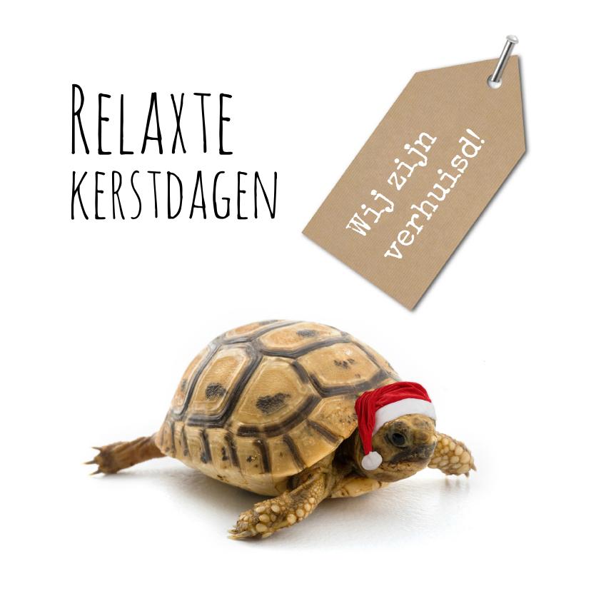 Kerstkaarten - Kerst verhuiskaart grappig met schildpad