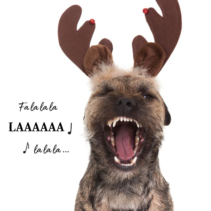 Kerstkaarten - Kerstkaart hond Border Terrier met rendier gewei