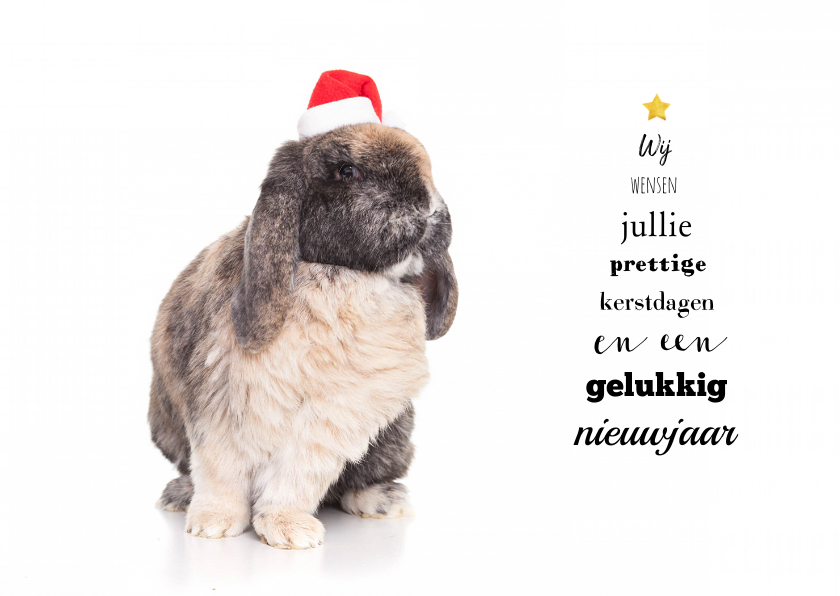 Kerstkaarten - Kerstkaart - Konijn met kerstmuts en kerstboom tekst