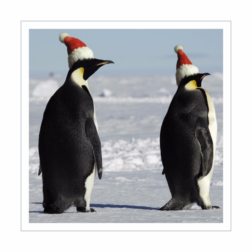 Kerstkaarten - Kerstkaart Pinguins met kerstmutsjes