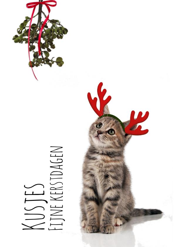 Kerstkaarten - Kerstkaart poesje met maretak