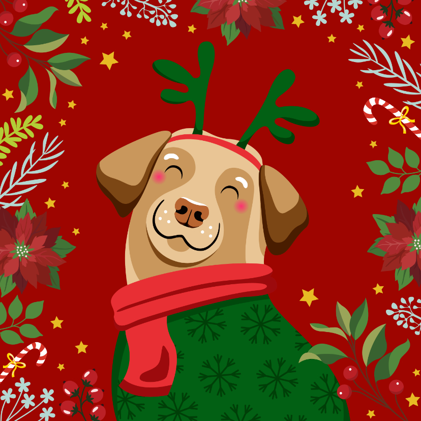 Kerstkaarten - Kerstkaart vrolijke hond en kerststerren