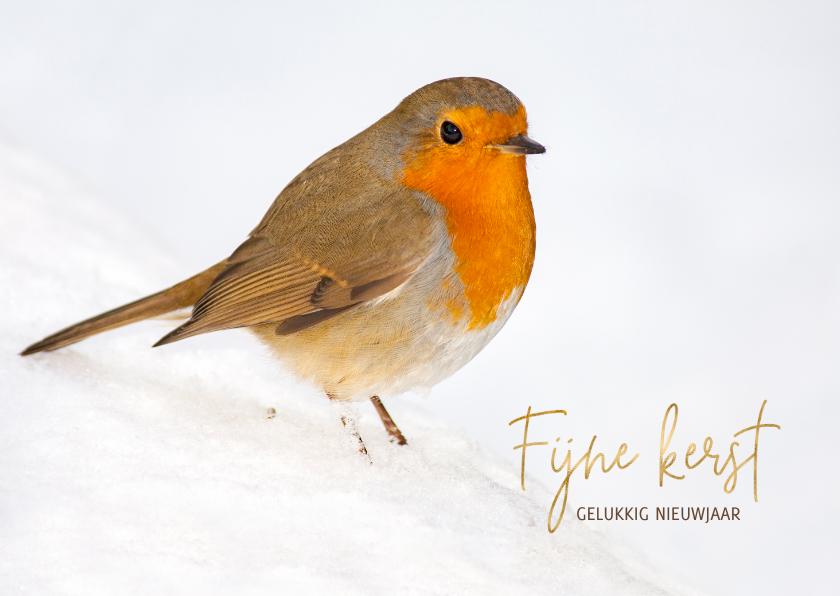 Kerstkaarten - Kerstkaart Winter roodborst
