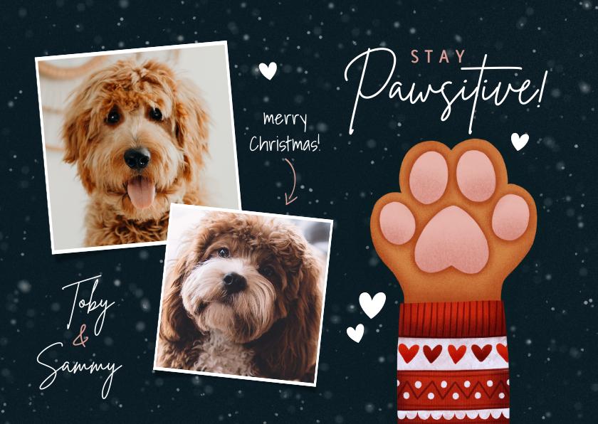 Kerstkaarten - Lieve kerstkaart Stay Pawsitive hondenpootje en foto's