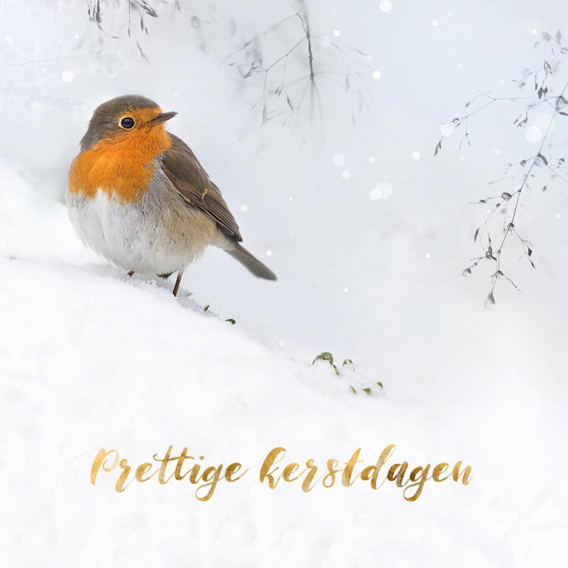 Kerstkaarten - Roodborst in de sneeuw