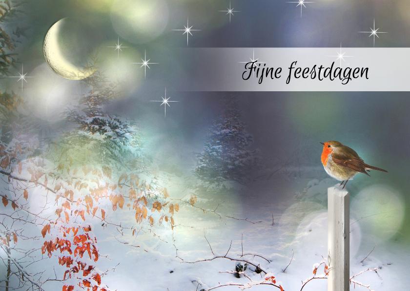 Kerstkaarten - Sterren aan de hemel