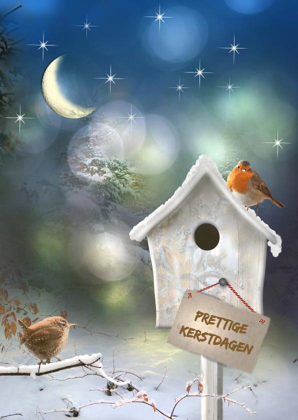 Kerstkaarten - Vogelhuisje in de sneeuw -staand-