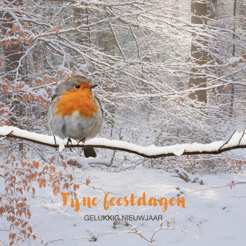 Kerstkaarten - Winters bos met roodborst