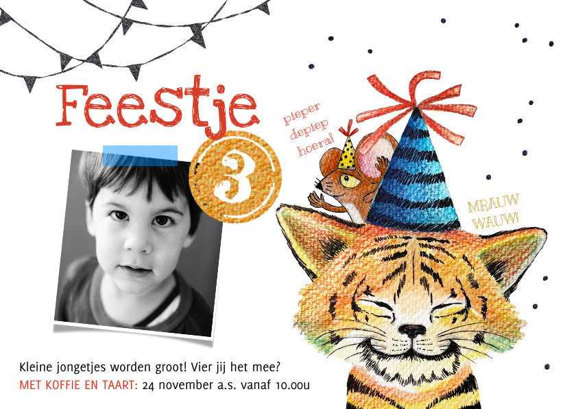 Kinderfeestjes - Kinderfeestje tijger kat jongen