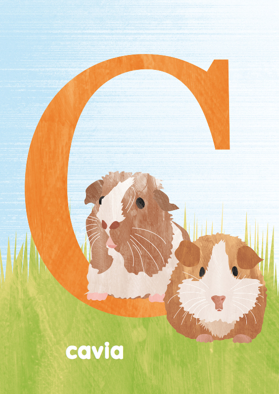 Kinderkaarten - C van cavia