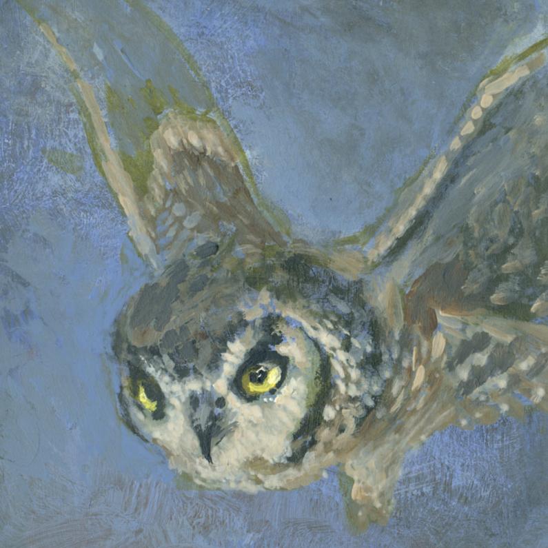 Kunstkaarten - Mooie handgeschilderd Uil