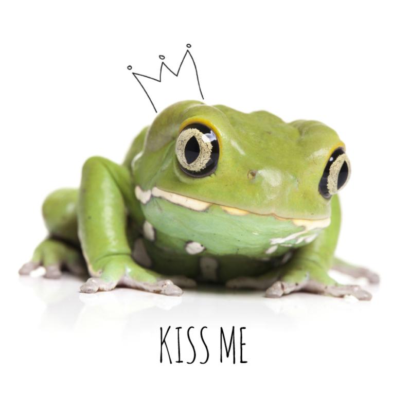 Liefde kaarten - Liefde - De kikker prins
