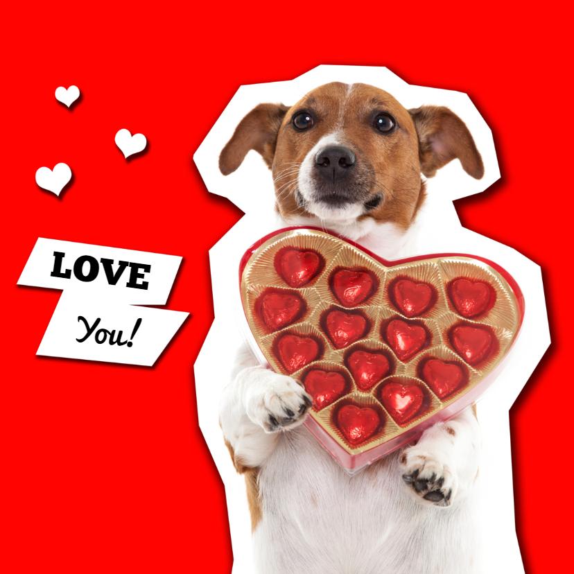 Liefde kaarten - Love you! Hondje met hartjes bonbons