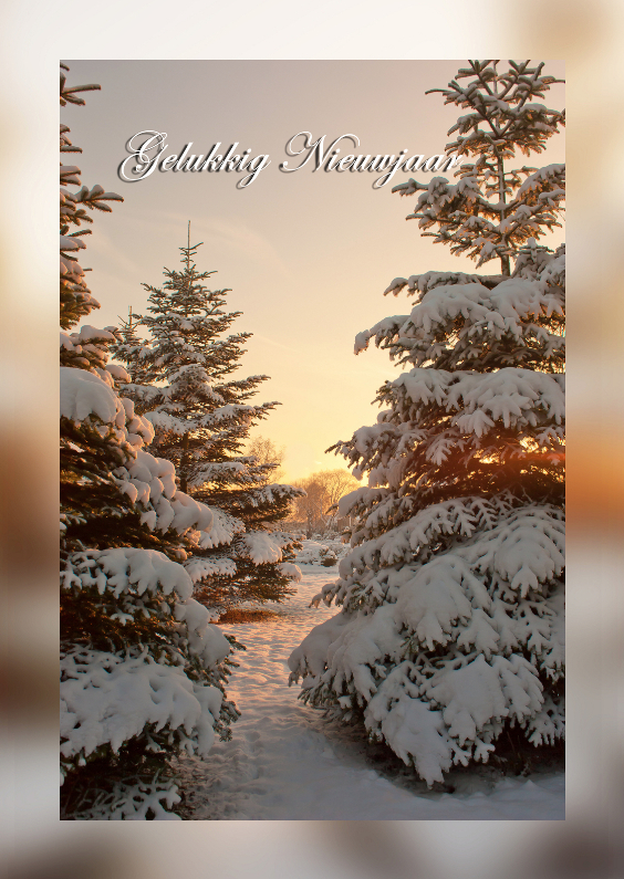 Nieuwjaarskaarten - Dennenboom