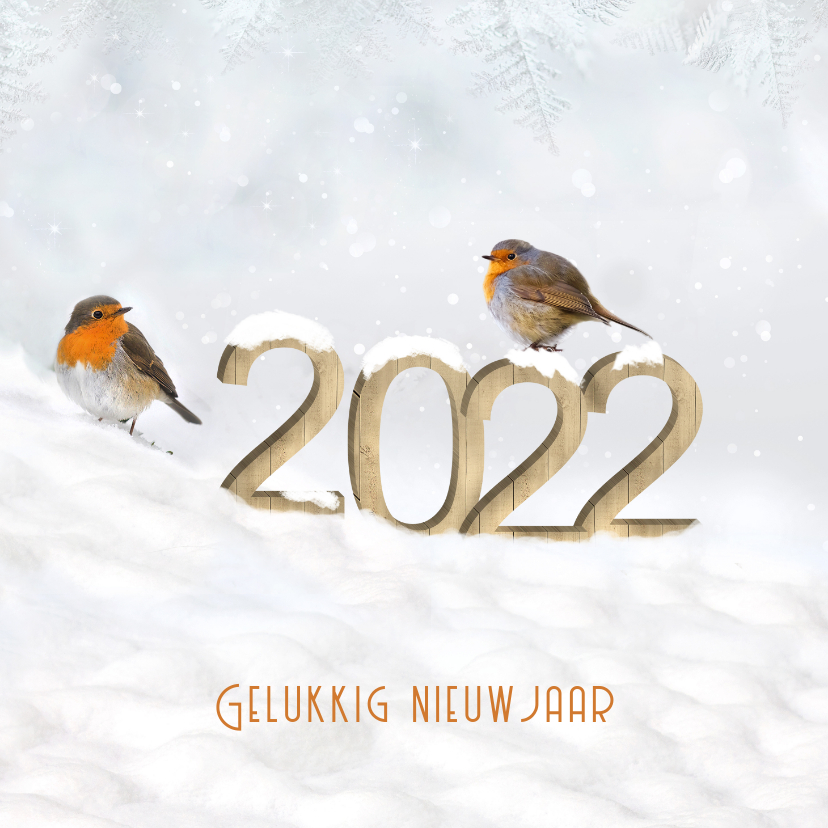 Nieuwjaarskaarten - Nieuwjaar cijfers van hout in de sneeuw met roodborstjes