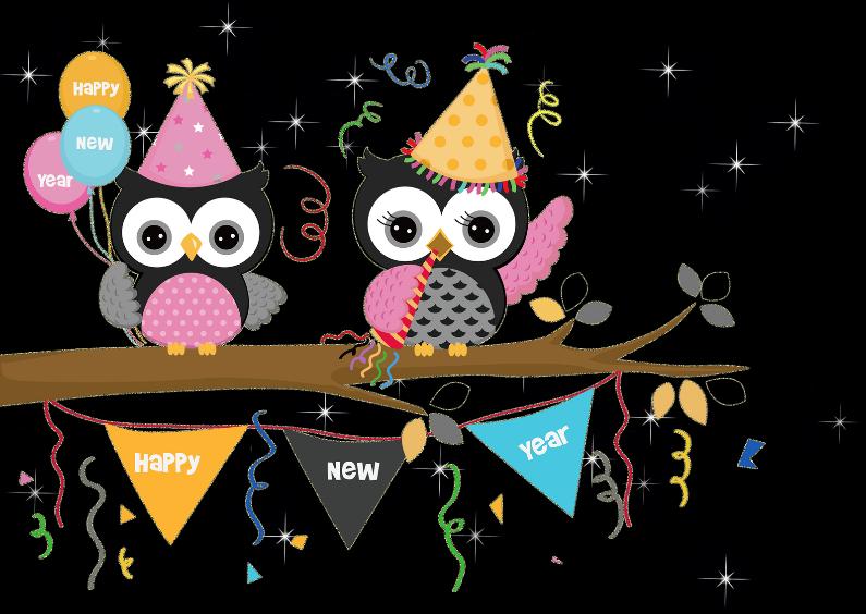 Nieuwjaarskaarten - Nieuwjaarskaart Happy new year met uilen