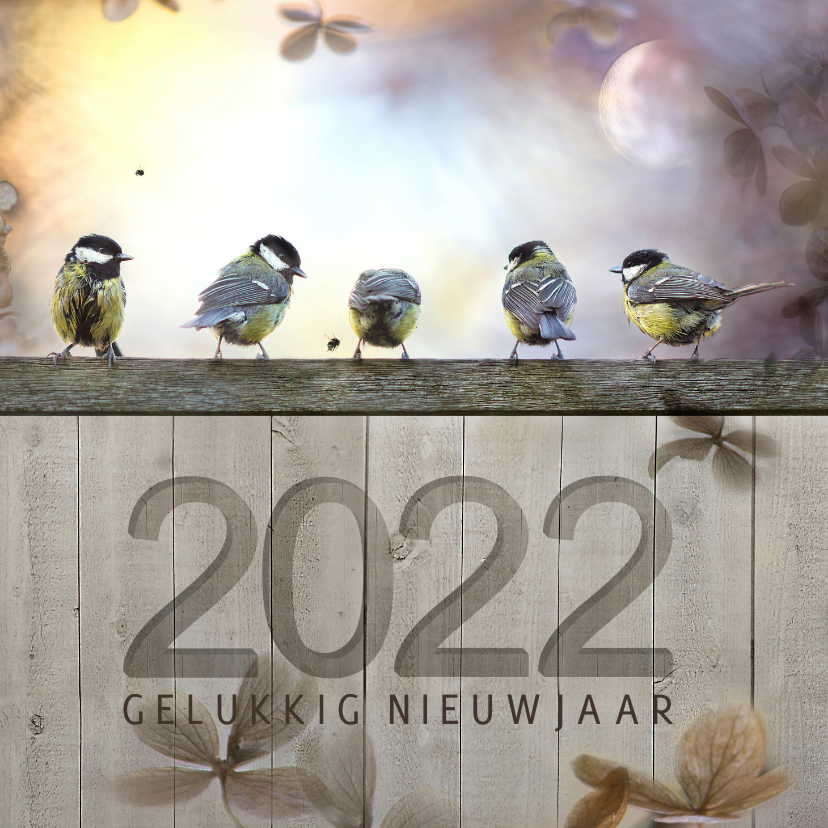 Nieuwjaarskaarten - Nieuwjaarskaart koolmezen op houten schutting met maantje