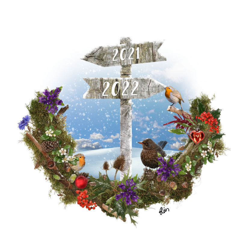 Nieuwjaarskaarten - Nieuwjaarskaart wegwijzer naar nieuwjaar