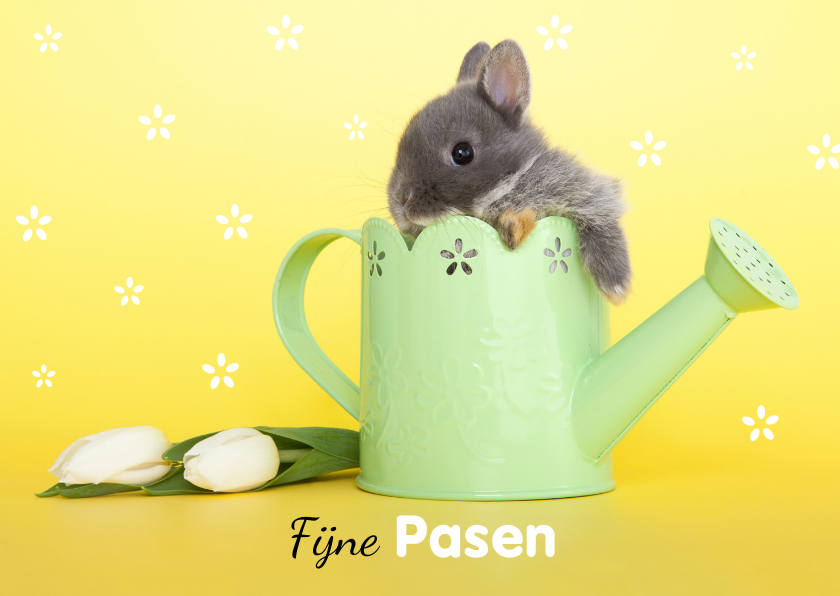 Paaskaarten - Paaskaart konijntje in gieter