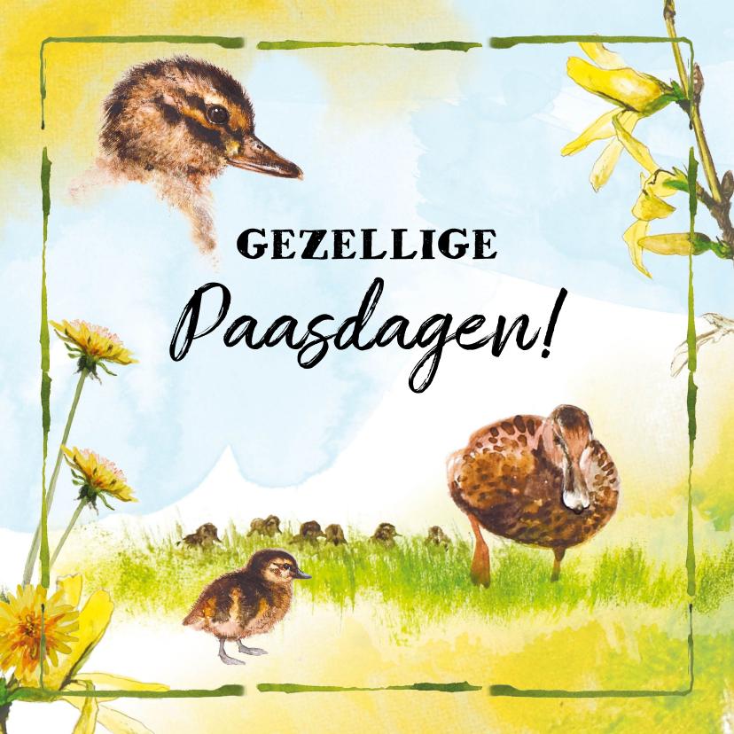 Paaskaarten - Paaskaart met vrolijke eendjes