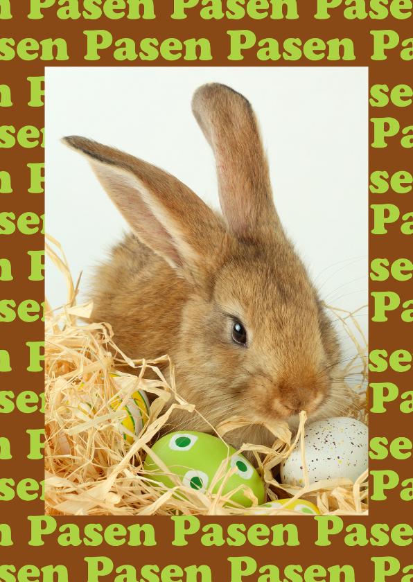 Paaskaarten - Pasen foto konijn met eieren