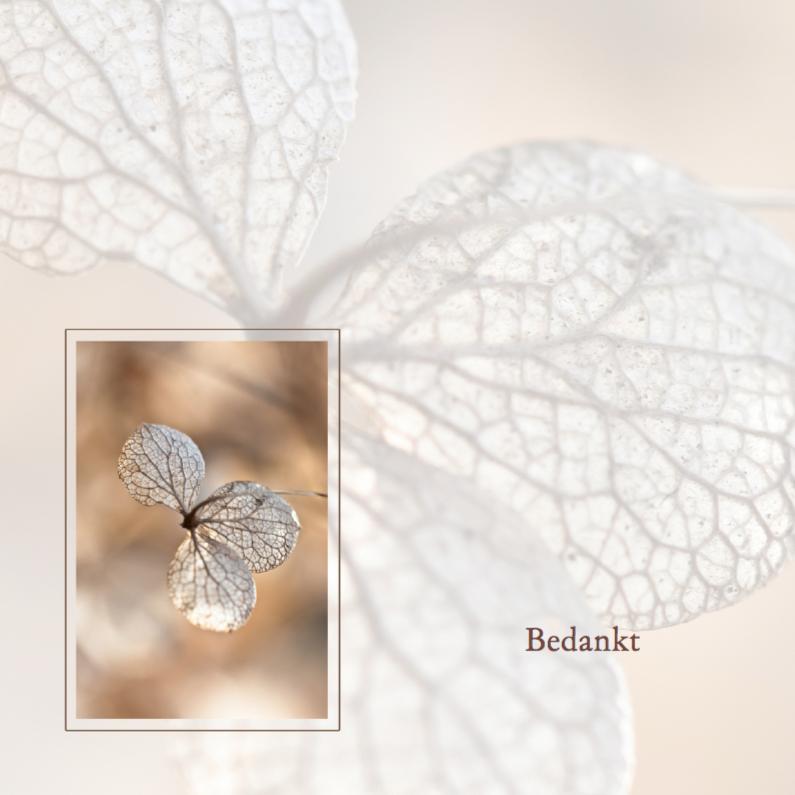 Rouwkaarten - Bedankkaart na overlijden -hortensia-
