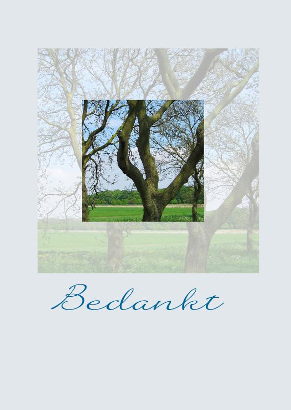Rouwkaarten - Bedankkaart rouw bomen