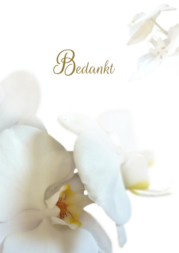 Rouwkaarten - Hemels witte bedankt orchidee