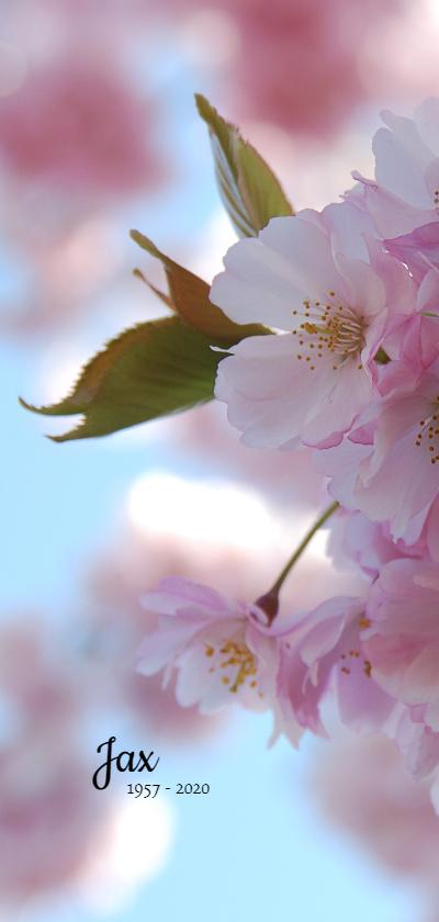 Rouwkaarten - Rouwkaart bloesem zonnig
