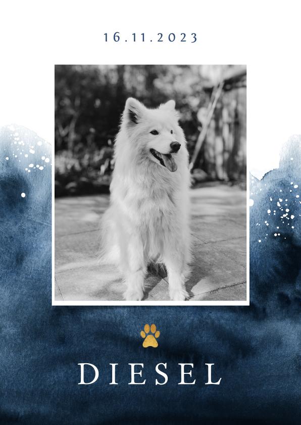 Rouwkaarten - Rouwkaart hond stijlvol verf goud foto hondenpootje