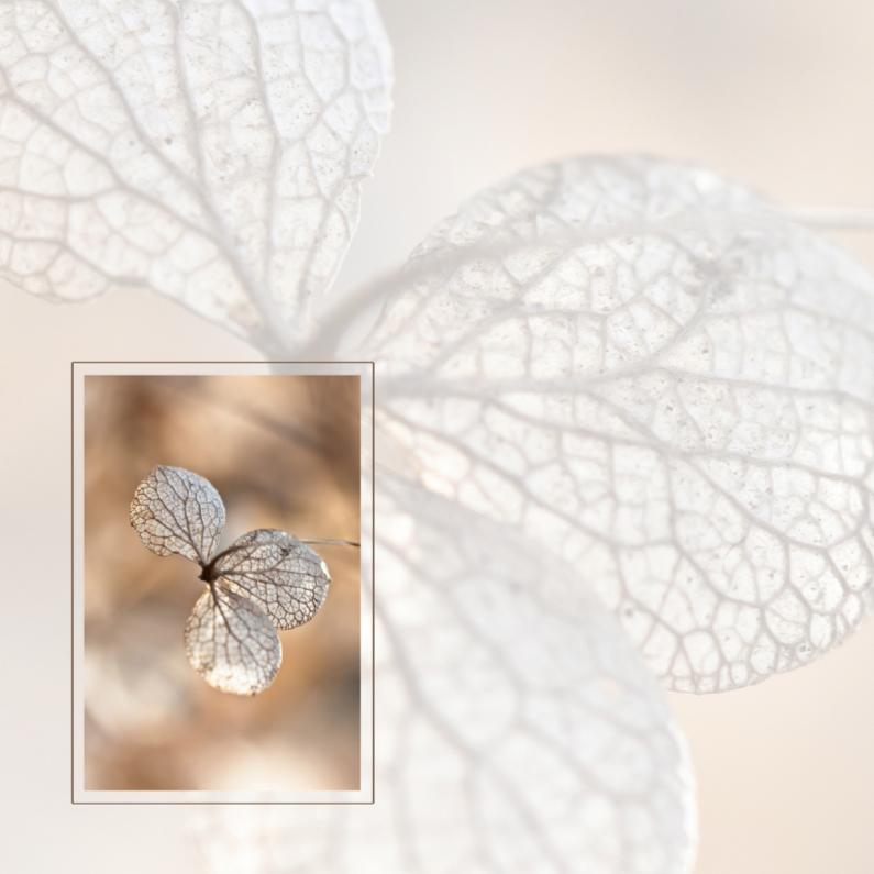 Rouwkaarten - Rouwkaart hortensia