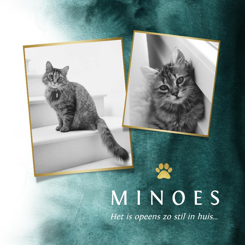 Rouwkaarten - Rouwkaart huisdier kat fotokaart verf goud pootafdruk