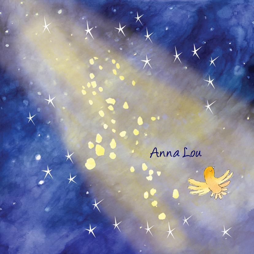 Rouwkaarten - Rouwkaartje sterren in licht met vogel