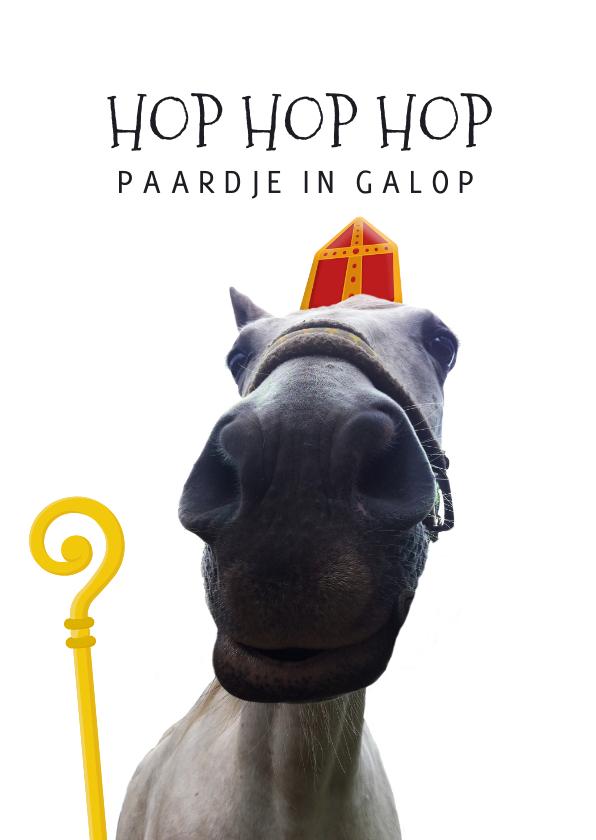 Sinterklaaskaarten - Sinterklaaskaart het paard van Sinterklaas